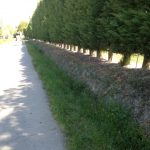 13. Canal des Alpilles which is a crucial water source.