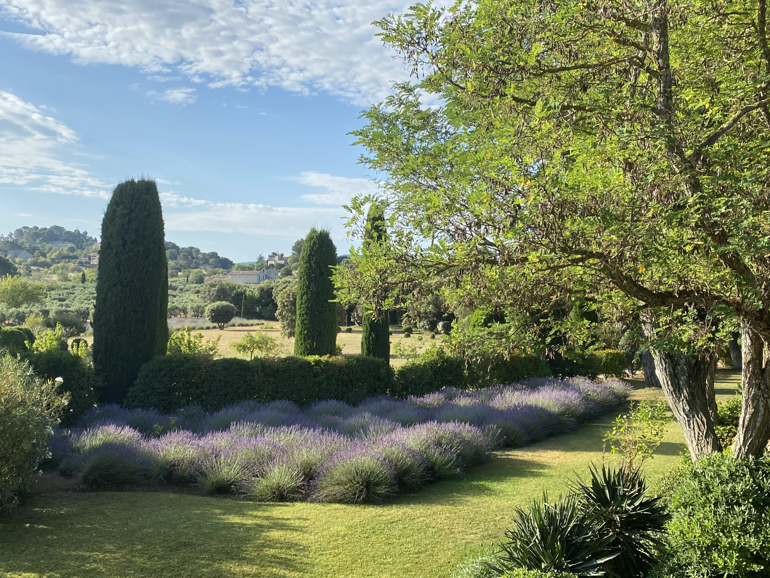 Provence: A View from a Window